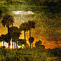 Skip Nall - Palm Trees at Sunset