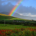 Barbara Walsh - Rainbow in Kerry