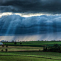 Matt Dobson - Sun Beams over a Dairy...