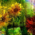 Pamela Cooper - Sunflower 4