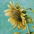 Mary Ann King - Sunflower Number One