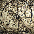 Lenore Senior and Dawn Senior-Trask - The Old Rake Wheel