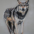 Tanya Patey - Wolf Standing