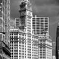 Christine Till - Wrigley Building Chicago...