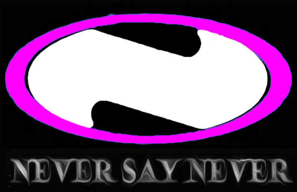 Never Say Never Inc - Fine Artist