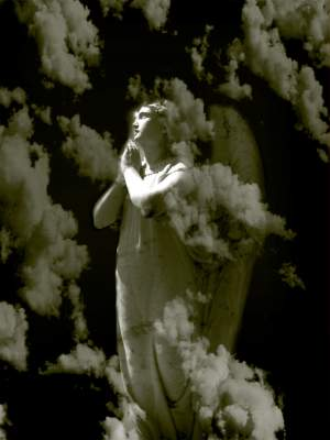 A Favorite Angel Photograph or Painting