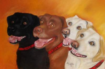 Labrado Retrievers