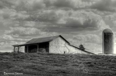 Rural North Carolina Landscapes - Photography Only