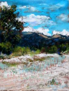 Tucson Pastel Society Annual Holiday Charity Show And Sale