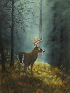6OTS Exhibiting Wildlife Art by Johanna Lerwick