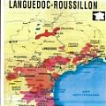 Languedoc And Roussillon Wine Gallery - Fine Art Gallery