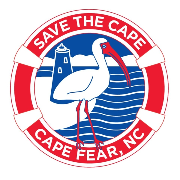 Save the Cape Online Gallery - Fine Artist