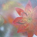 Water lilies and lotus flowers - Art Group