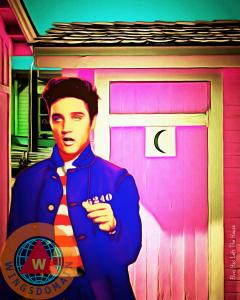 Elvis Has Left The House By Wingsdomain Art And Photography