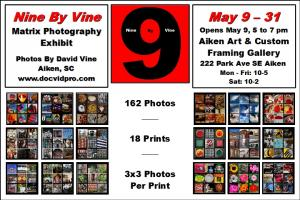 Opening For David Vine Nine By Vine Photo Exhibit