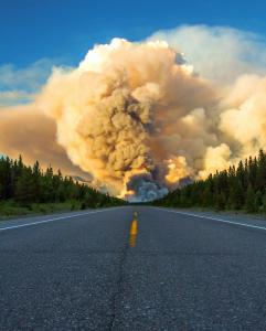 Spreading Creek Wildfire Rips Through Banff National Park PHOTOS VIDEO
