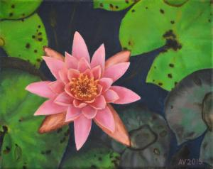 The New Oil Painting The Water Lily By Alex Vishnevsky